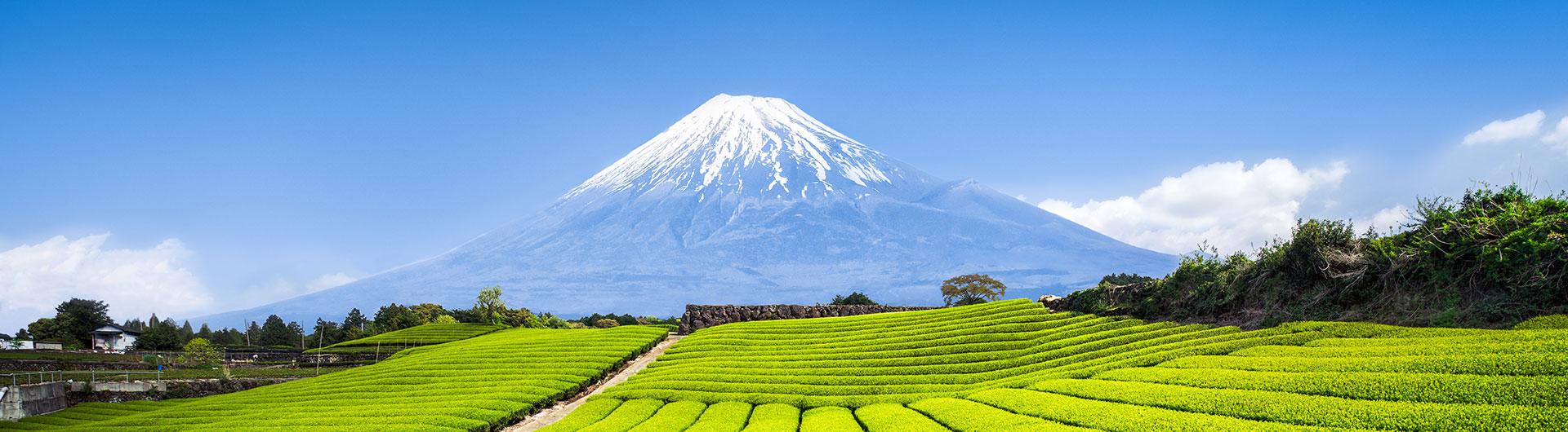 静岡県の写真